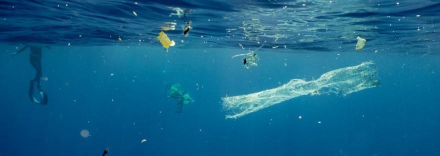 Floating plastic debris (copyright@vortexswim)